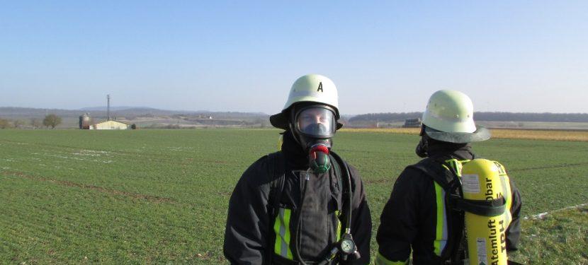 Hauptversammlung Feuerwehr Hellmitzheim