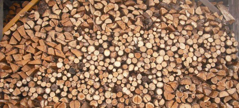 Bekanntmachung der Forstverwaltung