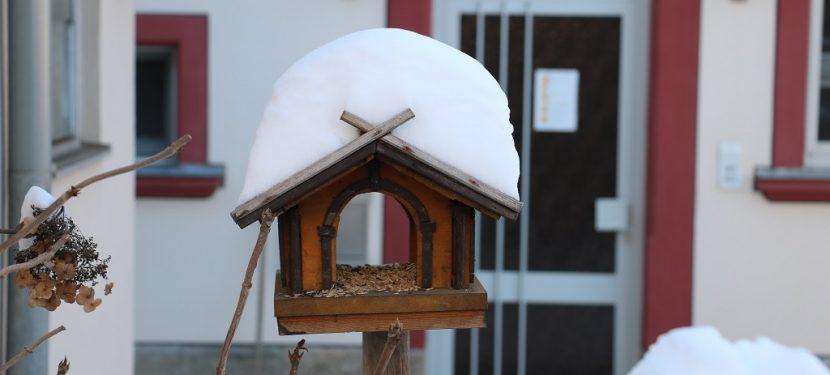 Wetterrückblick: Winter und Februar `21